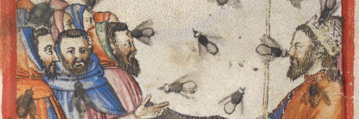 Simone Westermann über eine aufmüpfige Fliege. Ein Bildwitz um 1400?
